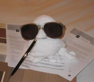 Seabourn Odyssey. The towel bird writing his review