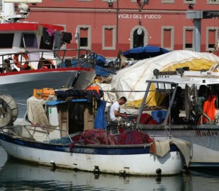 Local fishermen, Livorno