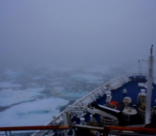 Off Svalbard Archepelego. July 24th 2011 23.20 local time. From Marco Polo.