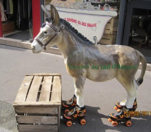 Donkey on roller skates!On a Rouen roll?