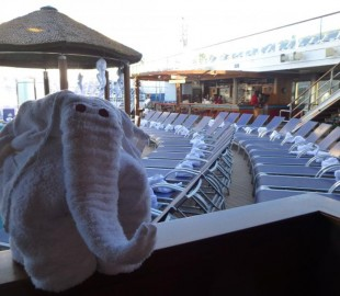 Invasion of towel animals on the Carnival Sunshine