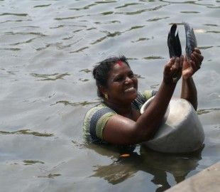 Ladies fishing in Cochin