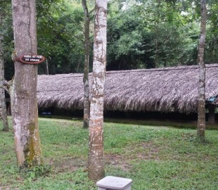 The Viet-Cong used these partially buried structures to hide from the Americans during the Vietnam war