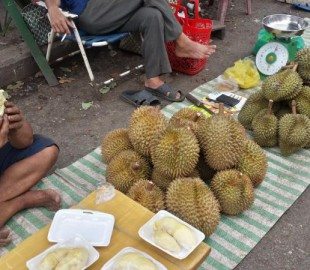 Durian - The one food I couldn't bring myself to try! It's only a fruit but it's no exaggeration when I say it's the foulest smelling thing I've ever come across in my life. Try it!??! I couldn't even stand by it!