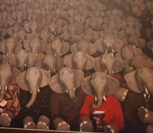 Elephants in the Cinema! This is a picture in the male restrooms on the Allure of the Seas, My husband took the picture for me as obviously I was unable to go in the male restroom, however it was taken on my camera.  Not only is it a strange picture but a strange location to have it in.
