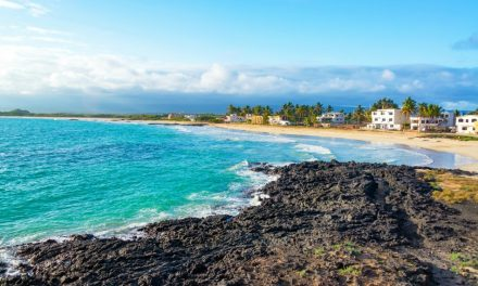 Celebrity Xploration Tranformed For New Galapagos Island Cruises