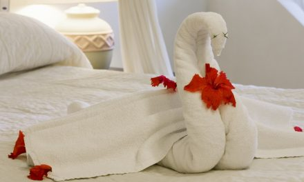 It Looks Like Being A Responsible Citizen Could Mean The End Of Towel Animals…