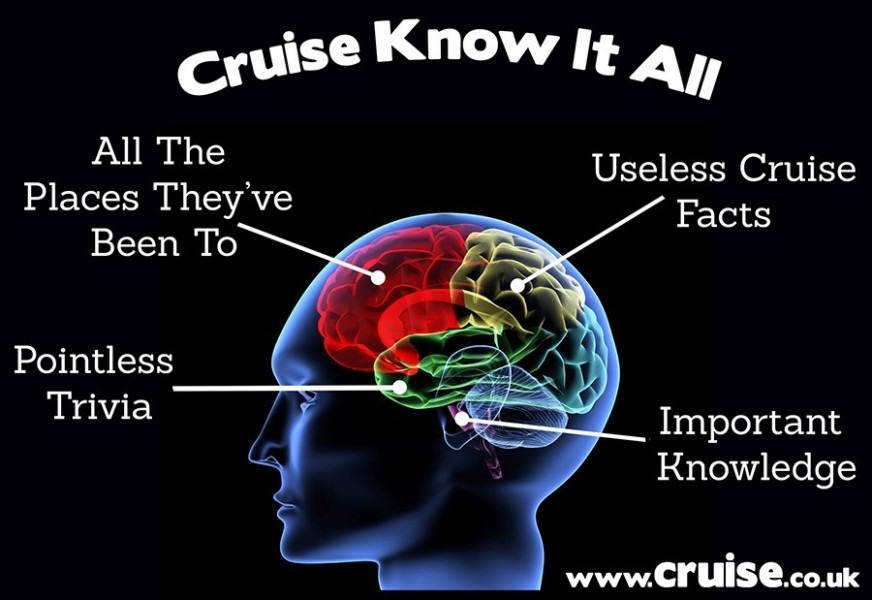 Cruise know it all