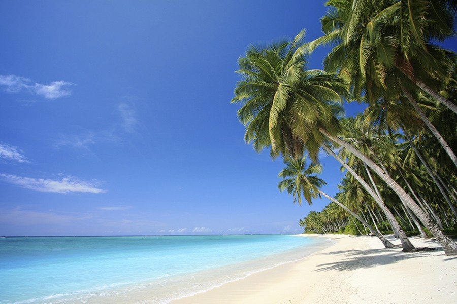 Landscape photo of tranquil island beach