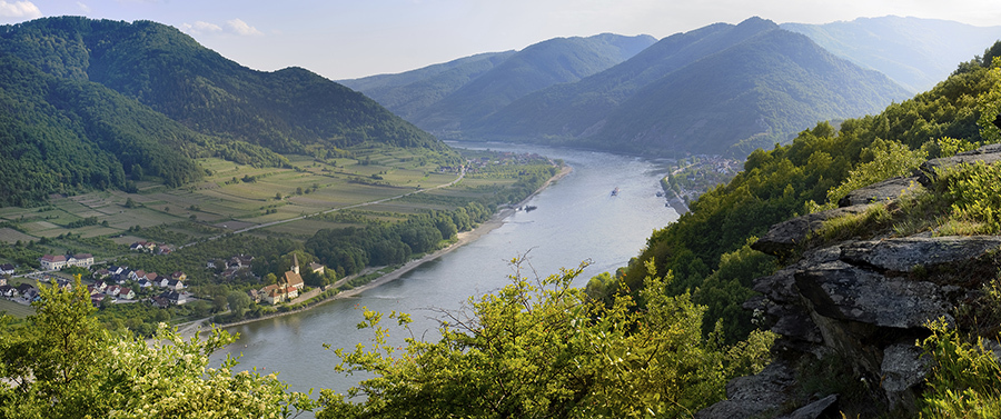 Danube[1]