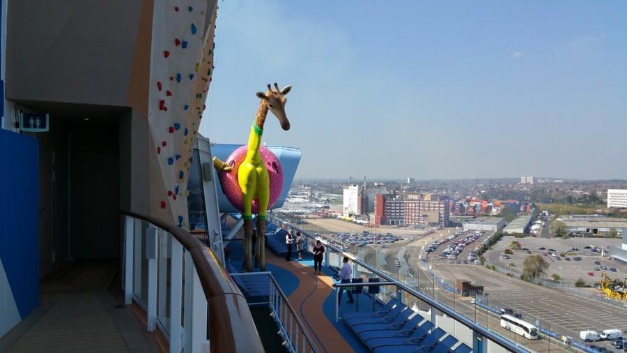Gigi The Giraffe - anthem of the seas