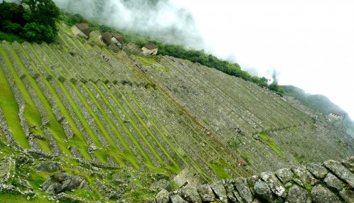 Vertigo. Terraces at Machu Picchu