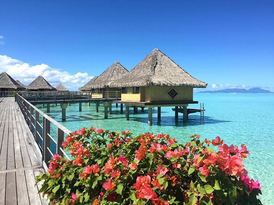 Bora Bora Cruise