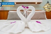 royal caribbean towel animals