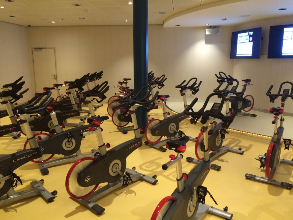 gym facilities on harmony of the seas