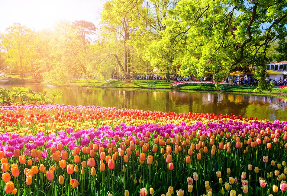 amsterdam botanical gardens