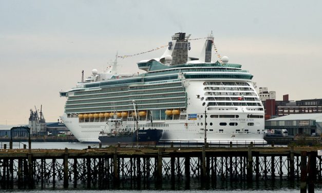 Independence of the Seas crew member disappears