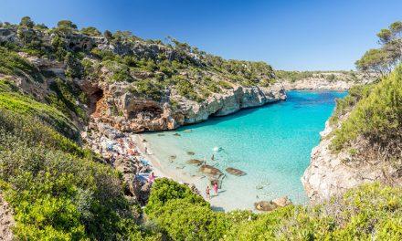 What's Hot in Palma De Mallorca