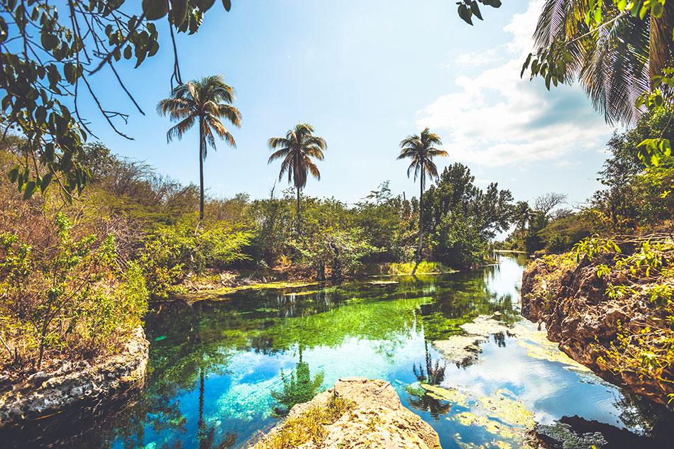 Jamaican Life: A Vacation At The Caribbean Gem