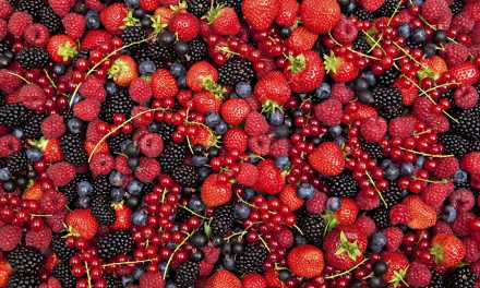Who ate all the….. Berries?