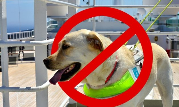 Life Saving Canine Barred From Boarding