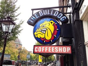 bulldog coffeeshop