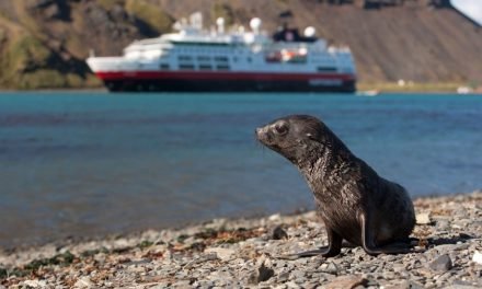 Hurtigruten To Offer Family Friendly Cruises For The First Time