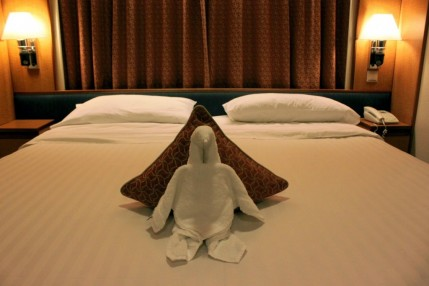 Penguin towel animal