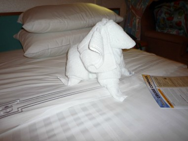 towel animal spaniel