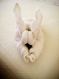 towel no idea