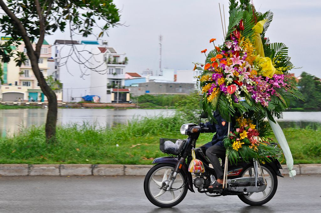 Vietnamese man holding flowers on scooter