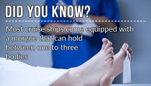 did you know cruise