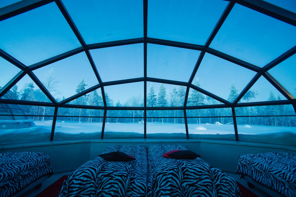 Four person glass igloo