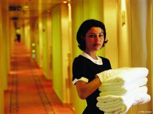 msc maid