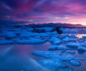 arctic constellations