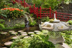Tropical Palace Gardens in Monte Funchal