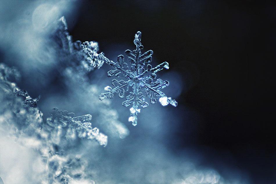 2017 snow flake