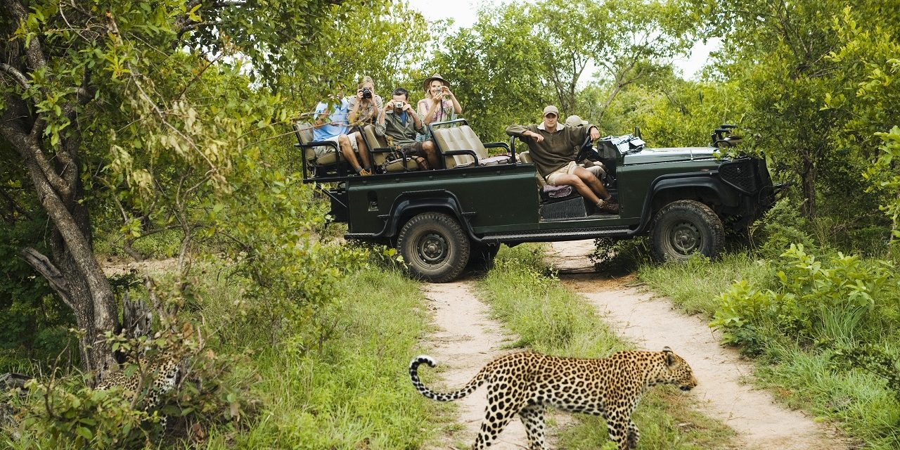 Three Reasons Kruger National Park Is The Hottest Right Now (Quite Literally)
