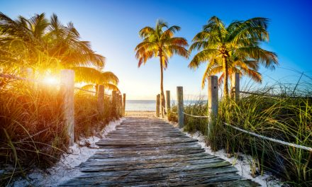 Florida Life: What To Pack, What Not To Pack & What Season Matters
