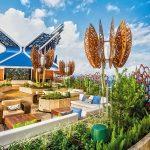 Apex Of Luxury With Celebrity Cruises