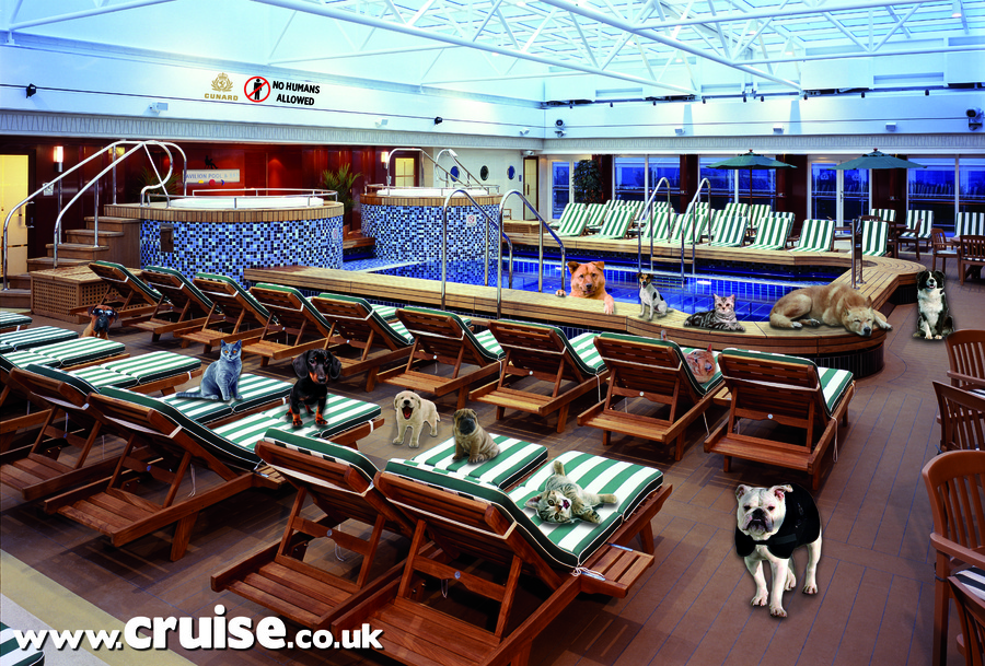 Things You Didnt Know About The Queen Mary - Princess mary cruise ship