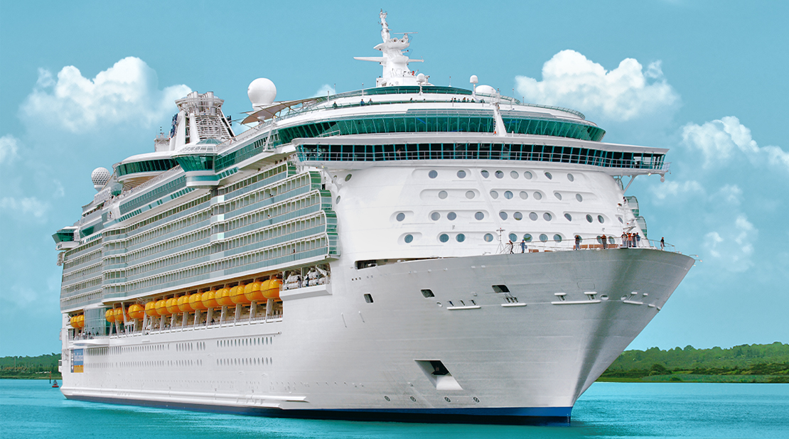 Freedom of the Seas at Sea