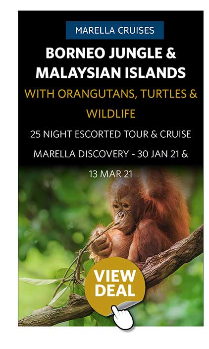 Borneo Jungle & Malaysian Islands