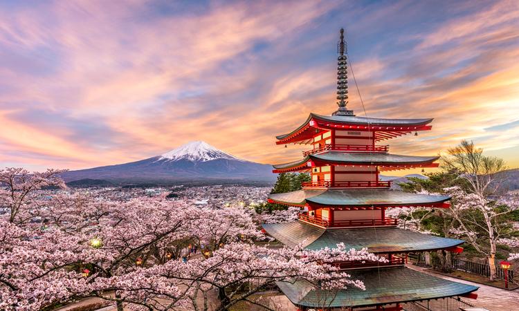 Mt Fuji & Hakone With Bullet Train, Tokyo & The Glaciers Of Alaska