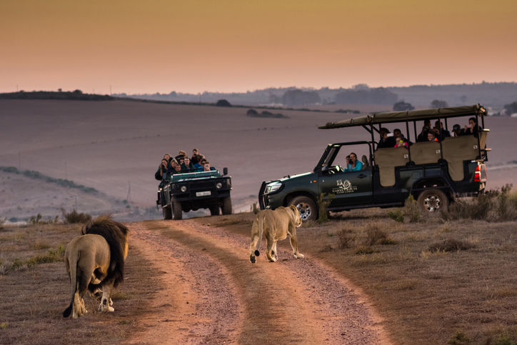 Escorted South African Garden Route with Indian Ocean Beaches & Namibian Coast